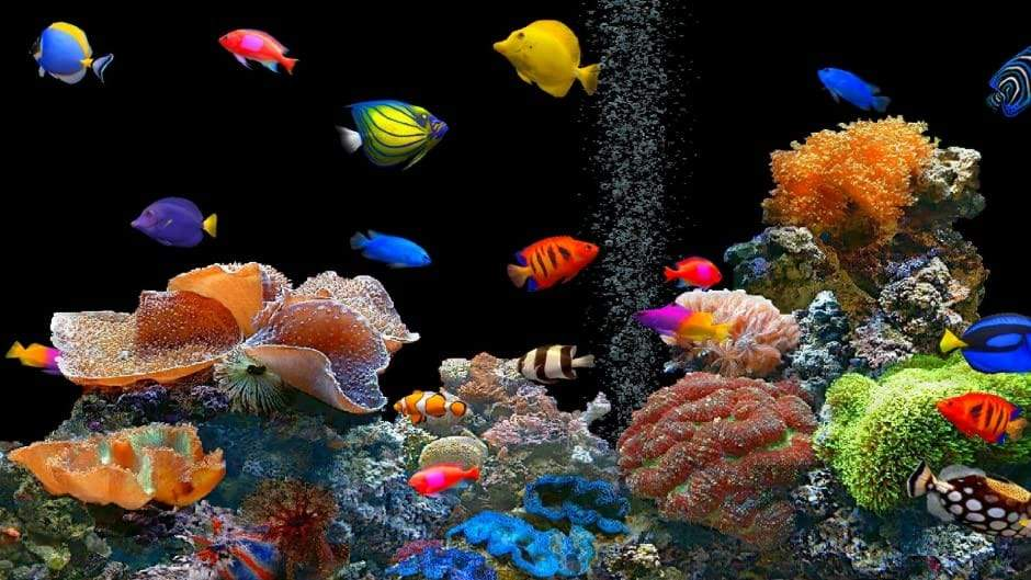 5D Diamond Painting Colorful Fish Aquarium Kit