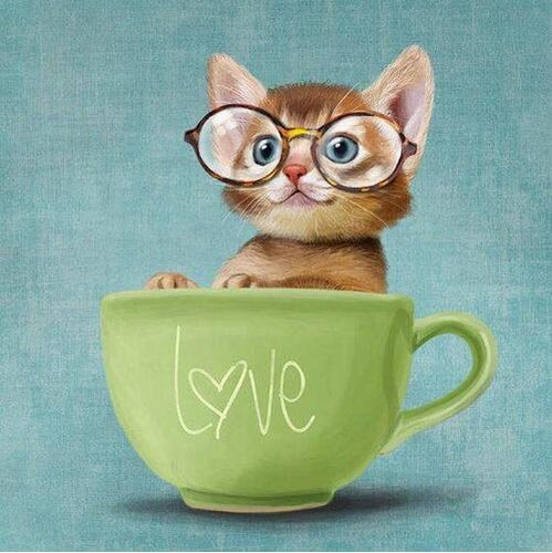 5D Diamond Painting Cup of Love Kitten Kit