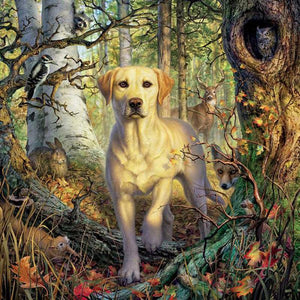 5D Diamond Painting Dog in the Forrest Kit