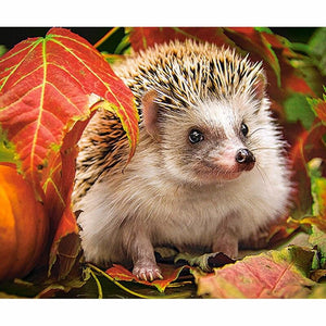 5D Diamond Painting Fall Leaf Hedgehog Kit