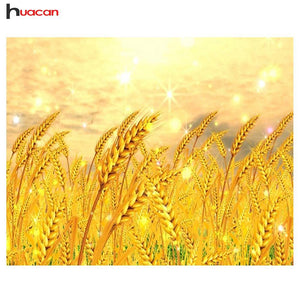 5D Diamond Painting Field of Golden Wheat Kit