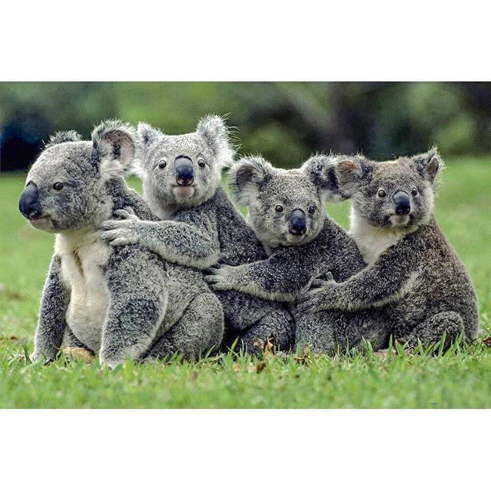 5D Diamond Painting Four Koalas Kit