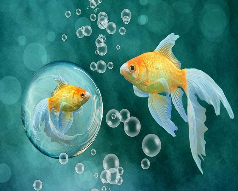 5D Diamond Painting Goldfish Reflection Kit