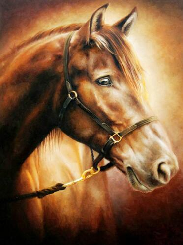 5D Diamond Painting Horse in the Golden Light Kit