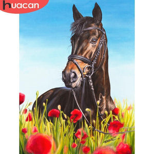 5D Diamond Painting Horse in the Poppies Kit