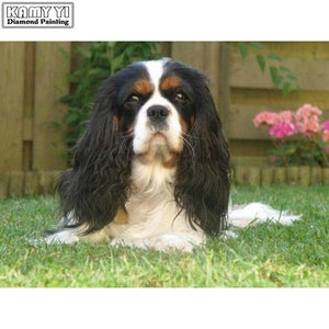5D Diamond Painting King Charles Spaniel on the Grass Kit