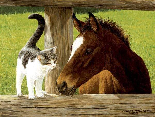 5D Diamond Painting Kitten and a Colt Kit