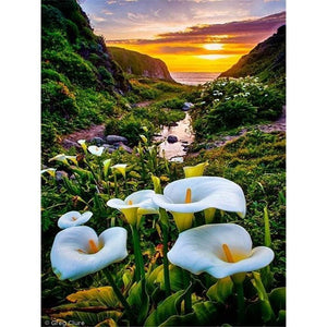 5D Diamond Painting Lily Kit