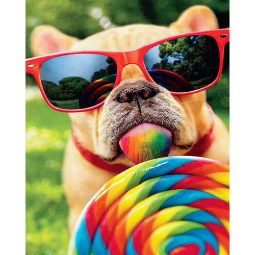 5D Diamond Painting Lollipop & Sunglasses Dog Kit