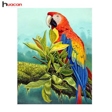 5D Diamond Painting Macaw Kit