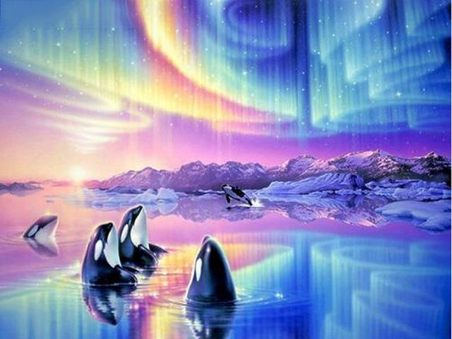 5D Diamond Painting Orcas and Arctic Aurora Kit