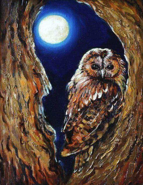 5D Diamond Painting Owl in the Moonlight Kit