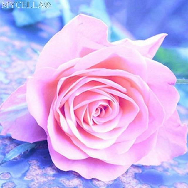 5D Diamond Painting Pink Rose Kit