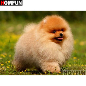 5D Diamond Painting Pomeranian Puppy Kit