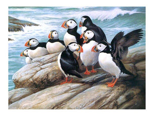 5D Diamond Painting Puffins by the Sea Kit