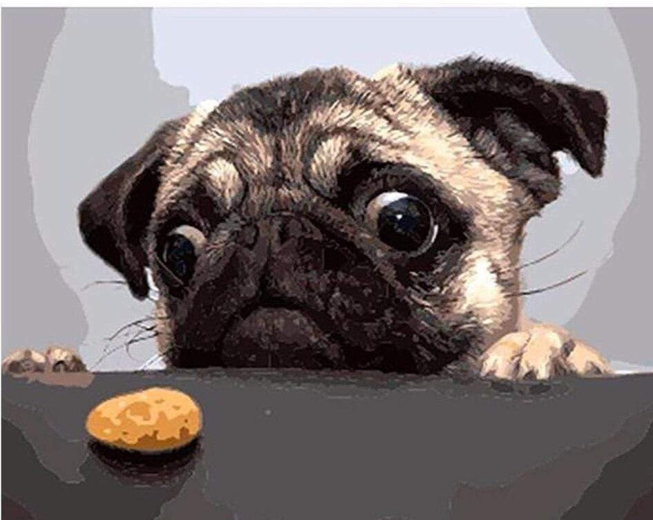 5D Diamond Painting Pug and a Cookie Kit