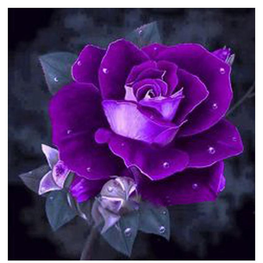 5D Diamond Painting Purple Rose Kit