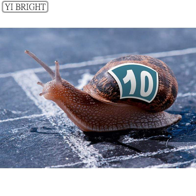 5D Diamond Painting Racing Snail Kit