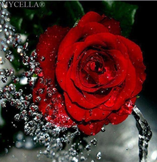 5D Diamond Painting Red Roses and Rain Drops Kit