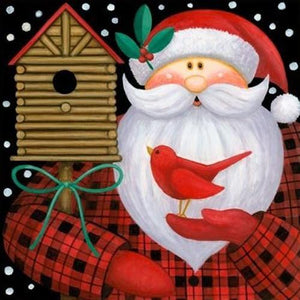 5D Diamond Painting Santa and a Red Bird Kit