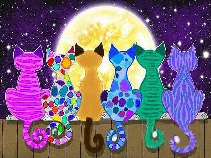 5D Diamond Painting Six Abstract Moon Cats Kit