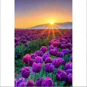5D Diamond Painting Sunrise Purple Tulip Field Kit