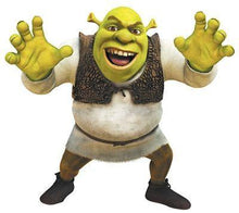 5D Diamond Painting the Shrek Ogre Kit