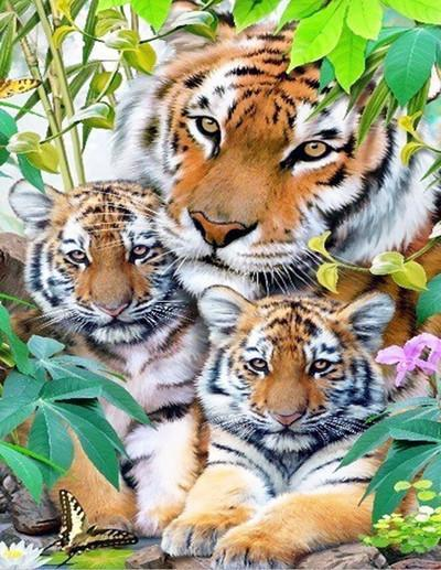 5D Diamond Painting Tiger and her two cubs Kit