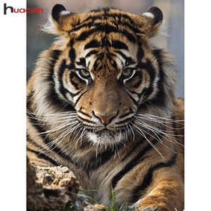 5D Diamond Painting Tiger Glare Kit