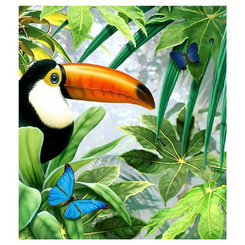 5D Diamond Painting Toucan and the Butterfly Kit