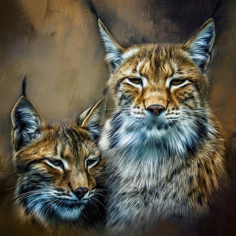 5D Diamond Painting Two Bobcats Kit