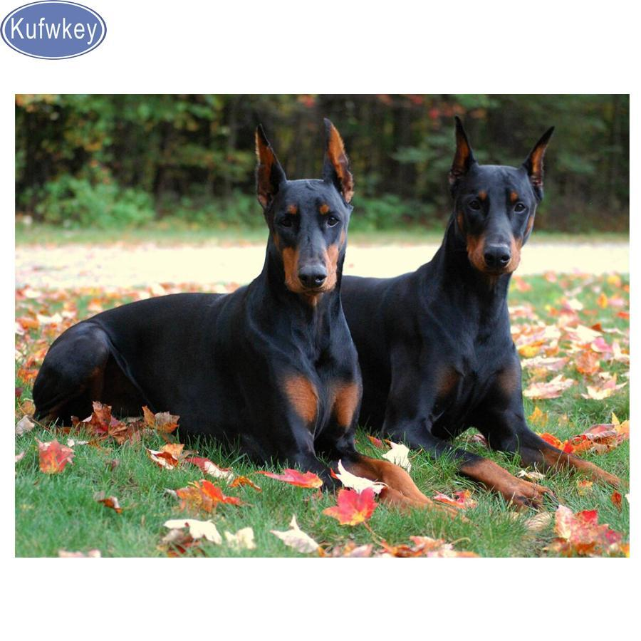 5D Diamond Painting Two Doberman Kit