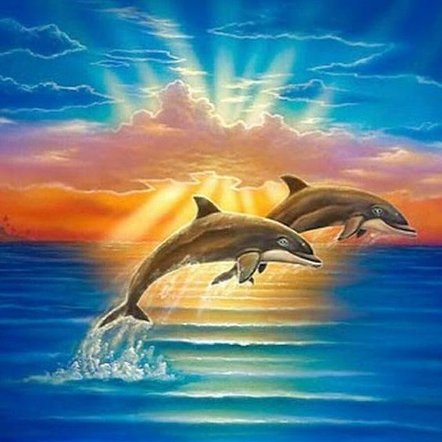 5D Diamond Painting Two Dolphins in the Sun Rays Kit