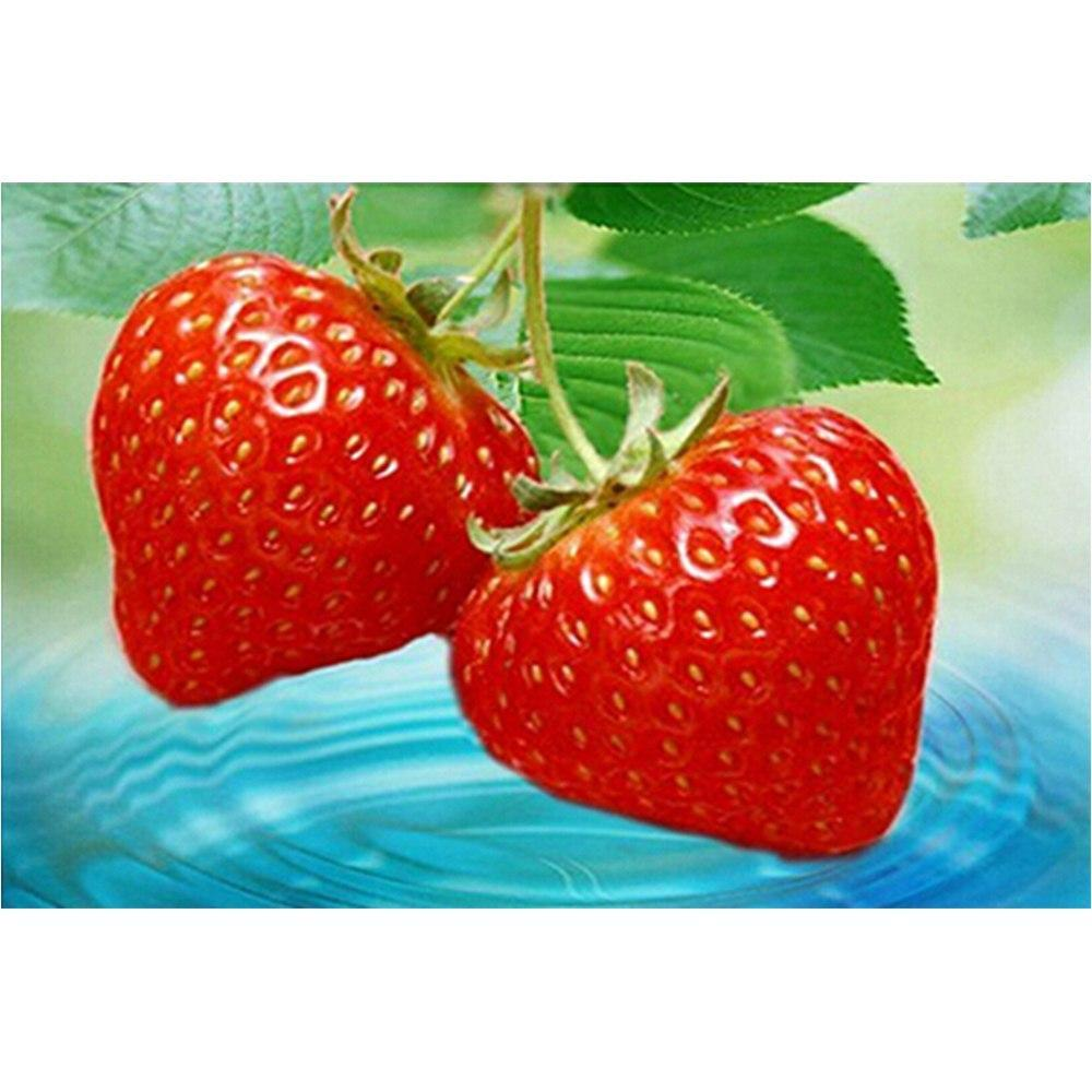 5D Diamond Painting Two Strawberries Kit