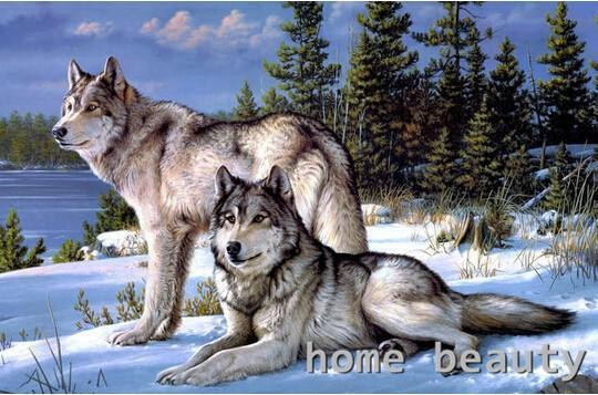 5D Diamond Painting Wolves Kit