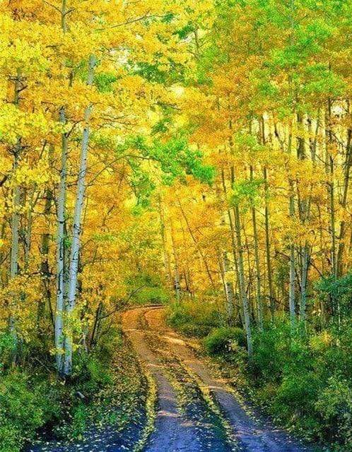 5D Diamond Painting Yellow and Green Leaf Trees Kit