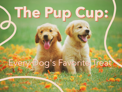 The Pup Cup: Every Dog's Favorite Treat
