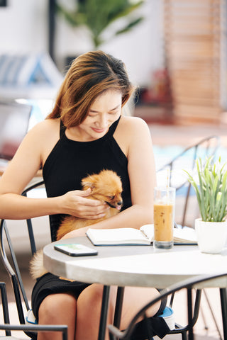 Woman with Dog, The Pup Cup: Every Dog's Favorite Treat