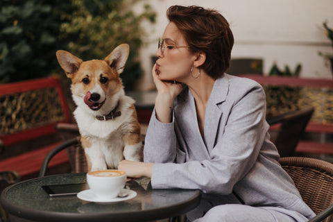 Woman with Corgi, Your Guide to Allowing Dogs in Your Coffee Shop