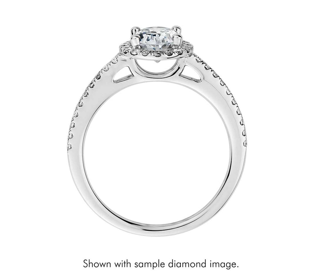 Engagement Ring - Halo Oval Cut