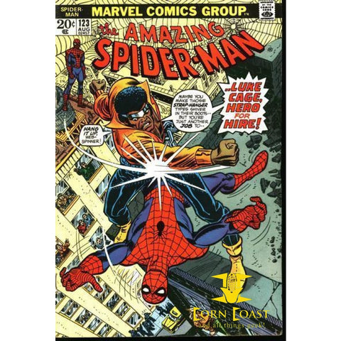 Amazing Spider-Man #123 - Back Issues