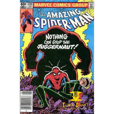Amazing Spider-Man #229 Newsstand Edition - Back Issues