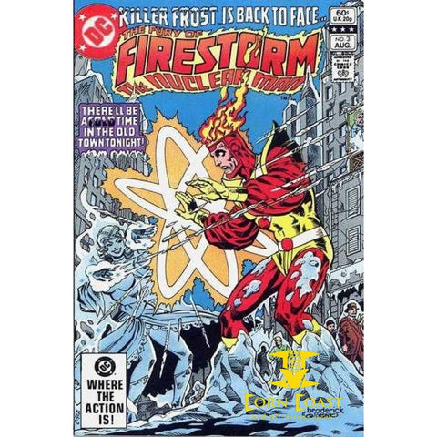 The Fury of Firestorm #3 - Back Issues