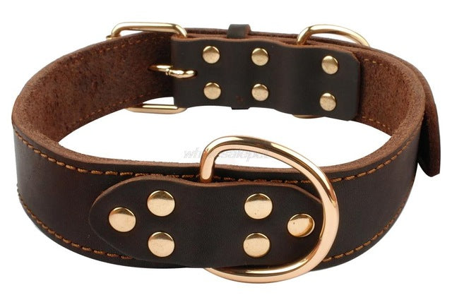 Premium Genuine Leather Heavy Duty Collar For Medium-Large Breeds