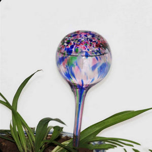 Stylish Glass Automatic Watering Globes - Sweet and Succulent