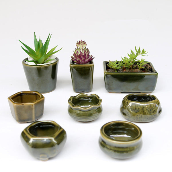 Set of Eight Ceramic Jade Pots - Sweet and Succulent