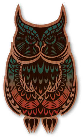 Color Rainbow Owl