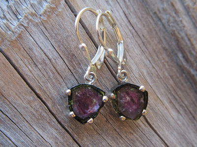 Watermelon Tourmaline Slice Earrings In Silver
