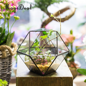 Tabletop Glass Terrarium Planter Box Micro Landscape Terrarium