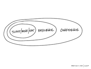 Carl Richards Behavior Gap Confidence Resilience Sleep